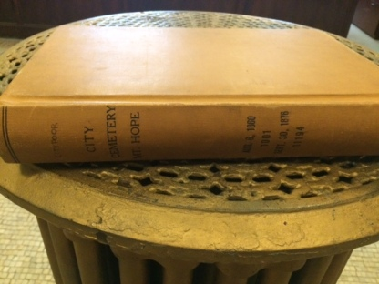 city cemetery book